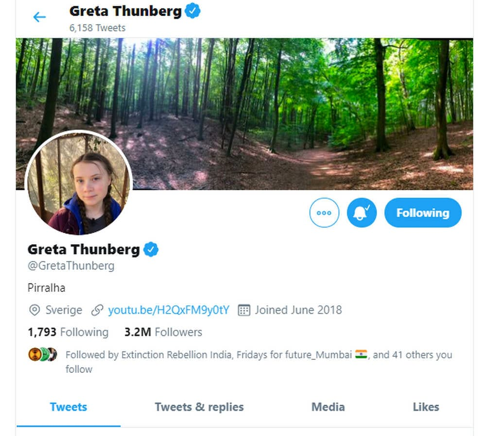 Greta Thunberg changed her Twitter bio to 'Pirralha' after the president called her a brat.