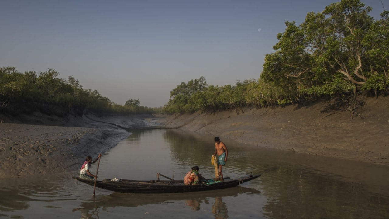 Villagers fish in a river by the Sundarbans tiger reserve. It's an increasingly dangerous activity as they are at risk of being attacked by tigers. Image: Jonas Gratzer/Mongabay