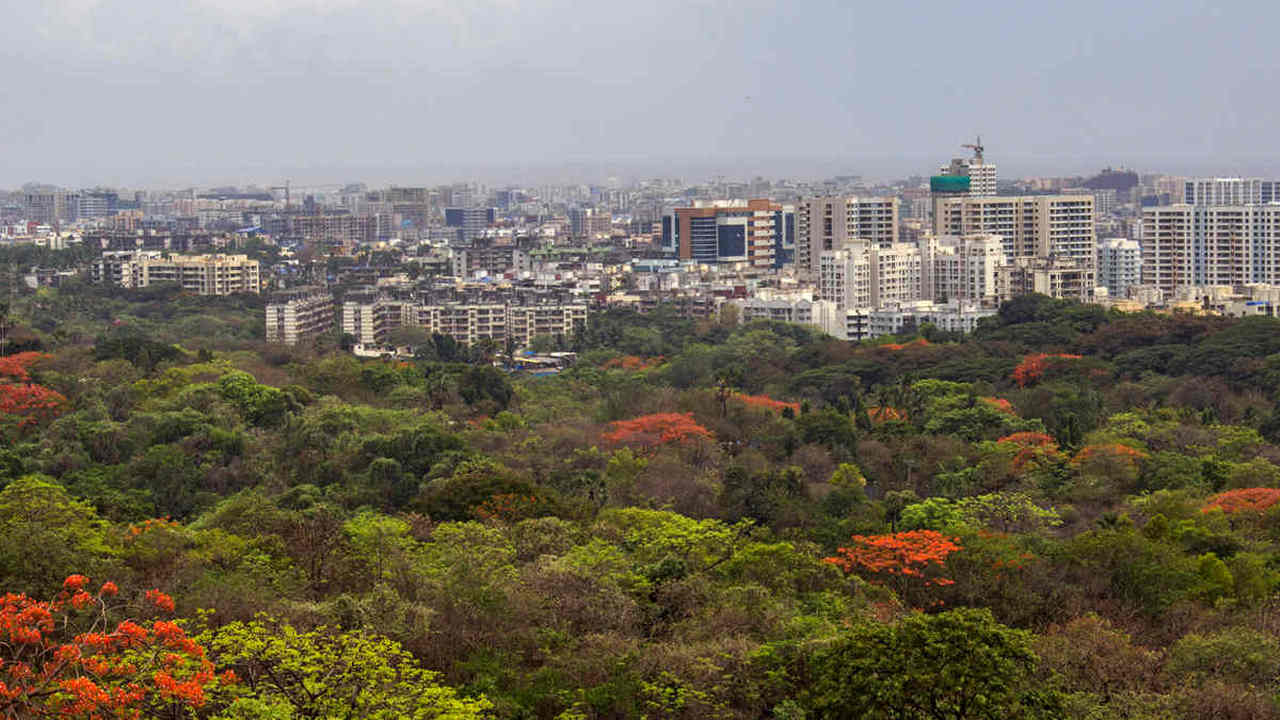 A view of Aarey Milk Colony. When a forest inside a city is converted for a Metro car shed, ultimately it is the poor and the marginalised who will suffer. Image credit: Rajesh Sanap