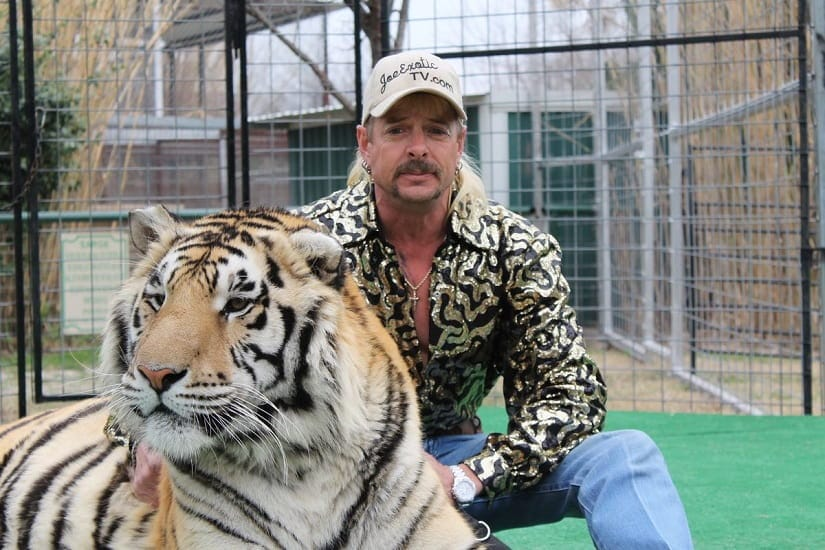 Tiger King review: Murder, mayhem and madness reign in Netflix true crime docuseries based on Joe Exotic