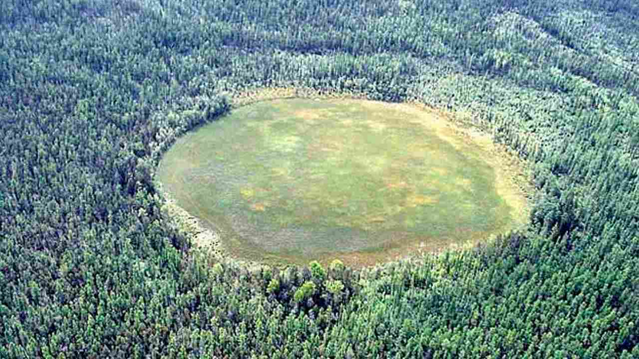 More than 100 years later, new patchy forest grows at the site of the massive 1908 Tunguska explosion. Image courtesy: Sovfot/Universal Images
