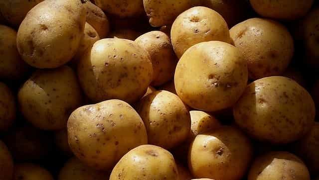 New study says people with type 2 diabetes may not need to avoid potatoes completely - Firstpost