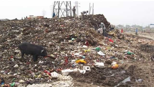 Delhi's waste mountain in Ghazipur ruins environment and health; politicians look to settle political scores, not solution