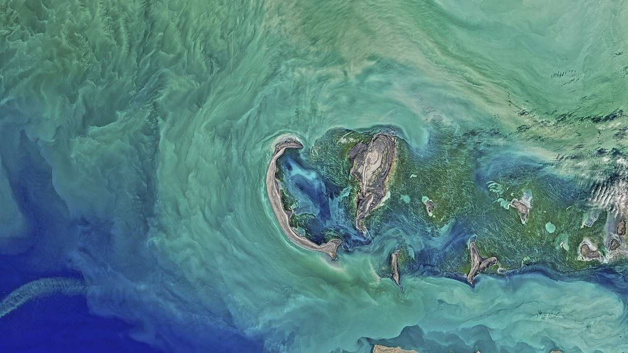 World Water Day: 10 pictures illustrating the most polluted waters around the world