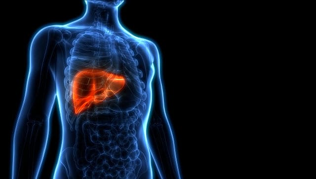 World Liver Day 2021: Significance and simple ways to keep your second-largest organ healthy
