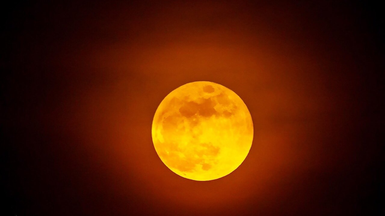 Indian Forest Service office shared images of the super blood moon as captured by Dr Vivek Banerjee. Image credit: Twitter @rameshpandeyifs