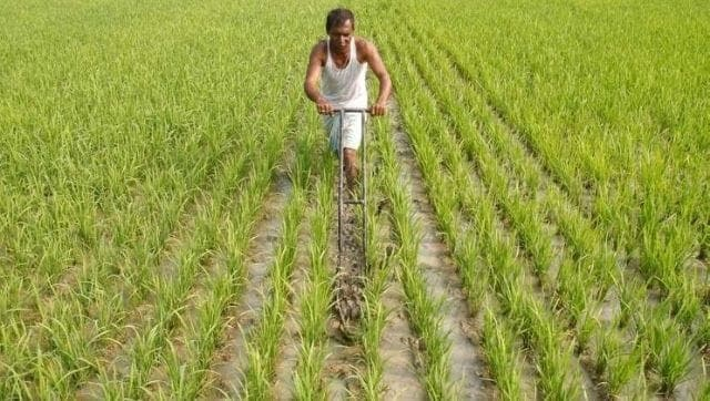 Union Budget 2021: Govt should focus on R&D in agriculture, raise outlay, help farmers to diversify crops
