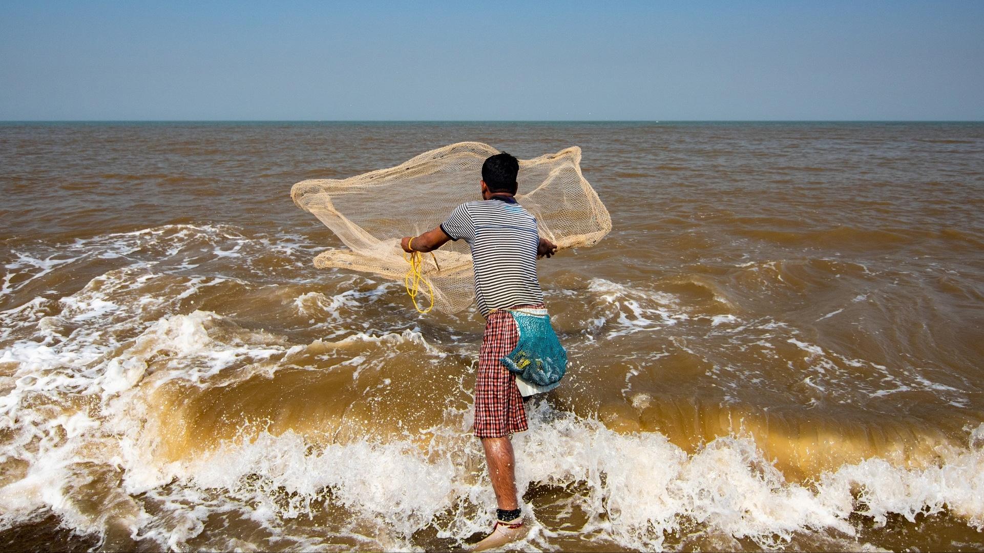 Mumbai coastal road project: Photographers document marine life, fishermen who stand to lose - Firstpost