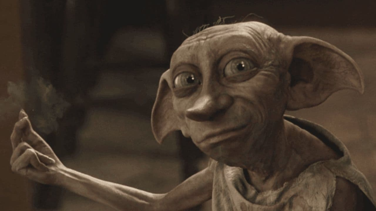 Dobby is free, exclaim Twitterati as CCTV footage captures creature resembling Harry Potter elf in driveway