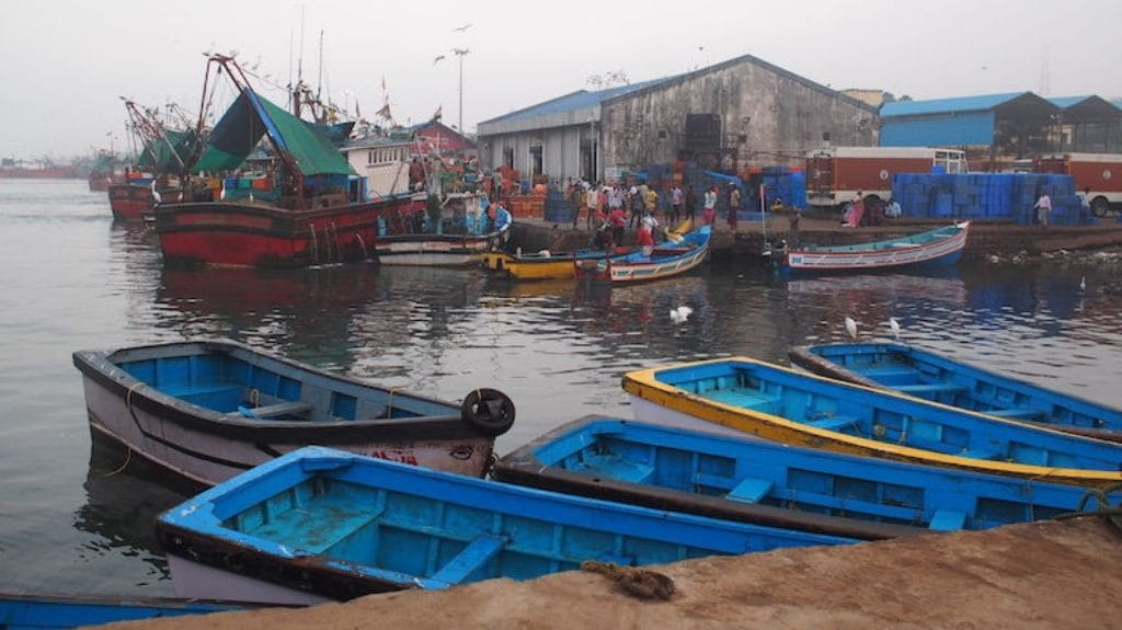 India's fishing fleet is a mix of traditional boats, small and medium-size motorised vessels, and larger mechanised boats that go out farther and stay longer at sea. The latter produce most of the country's catch.