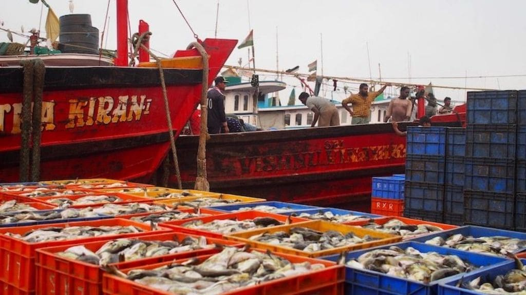 Fishing supports as many as four million people, according to government estimates, including one million active fishers.