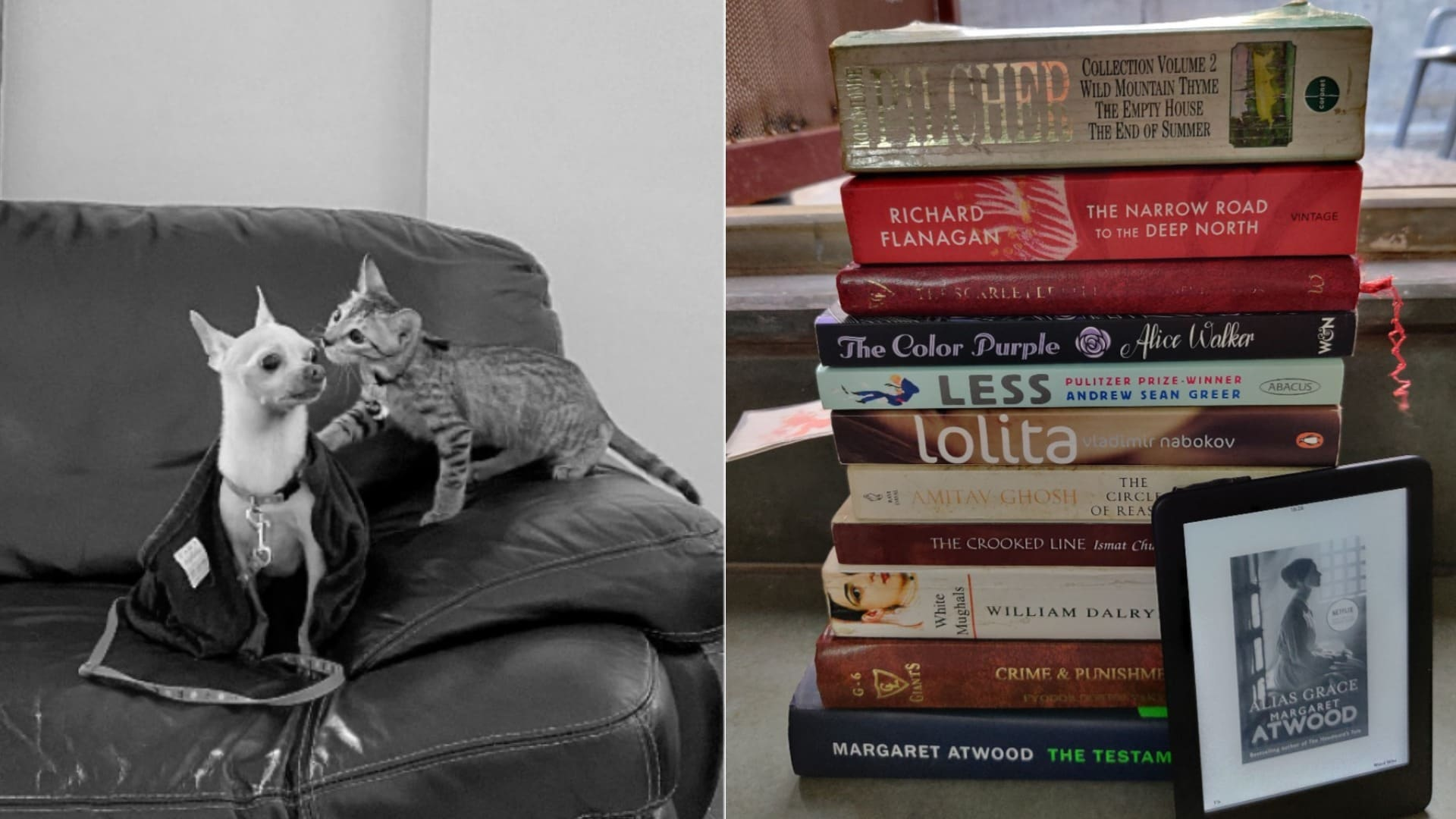 pets-and-books