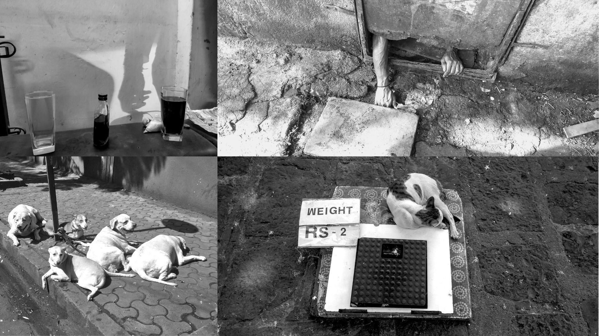 In Mumbai Monochrome, photography and haiku conjoin to explore the unfamiliar in the mundane