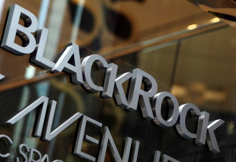 BlackRock vows tougher stance on climate after activist heat