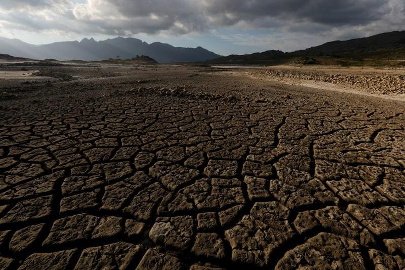 Last year was fourth hottest on record, outlook sizzling: U.N.