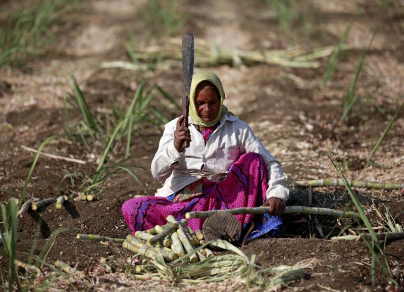 Ministers back plans to give subsidies to sugar cane growers: Paswan