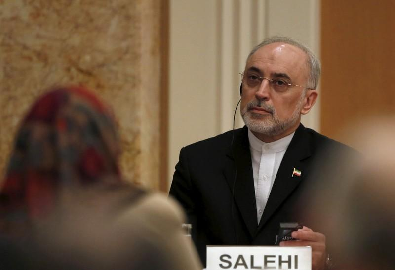 Iran is preparing for possible increase of enrichment capacity if deal fails: nuclear chief