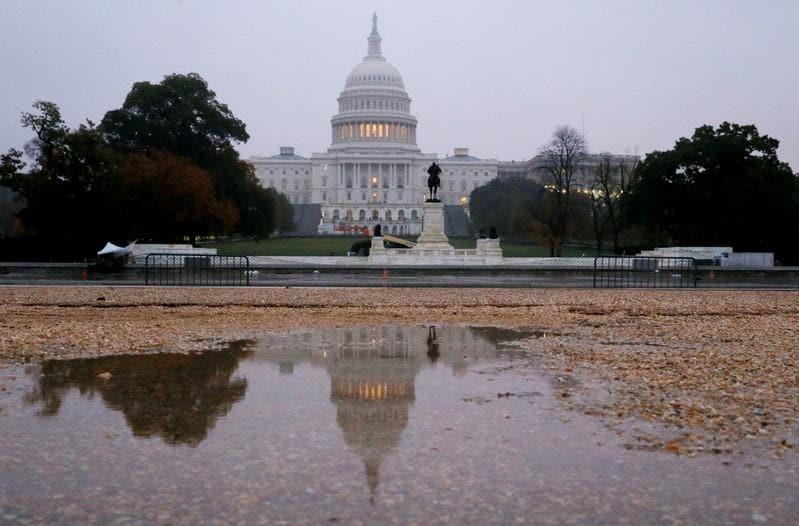 Explainer: Impeachment is not a quick bye, bye birdie - Pelosi